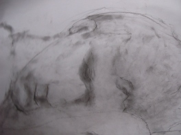 Chris, charcoal dust on white paper